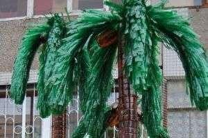 Пальма на вашем садовом участке это