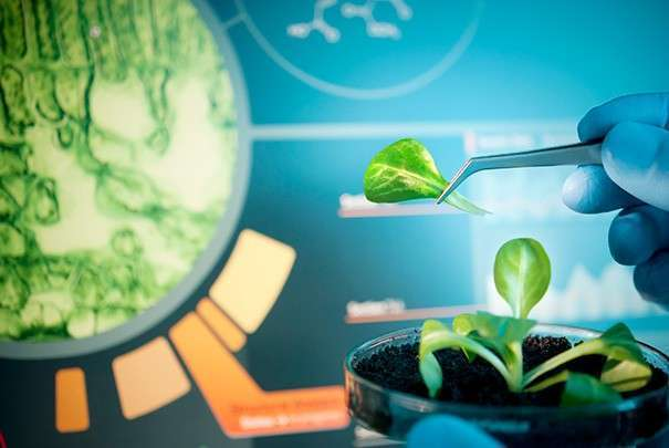 biotechnology future The use of biotechnology in farming has jumped rapidly due to high yields and low costs key concerns about biotechnology include safeguarding technology, labeling, laws, regulations, patents, and research.