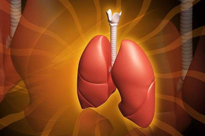 Формы атеросклероза лёгких