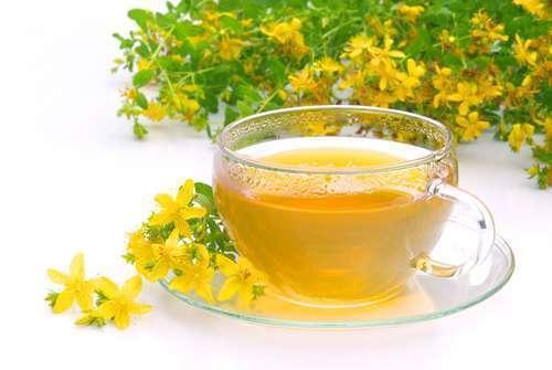 Зверобой чай для беременных 100