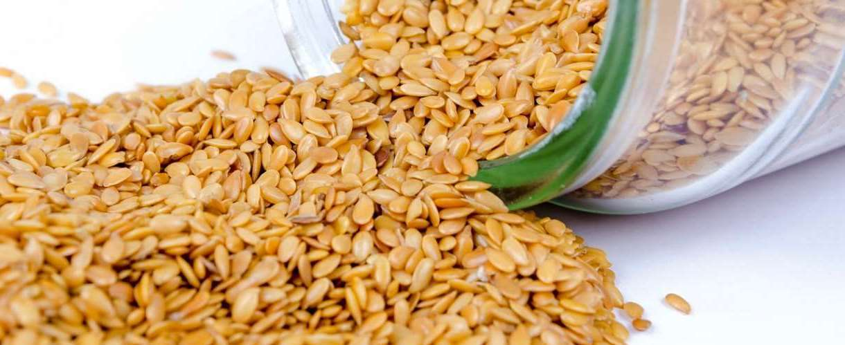 семена кунжута горчат