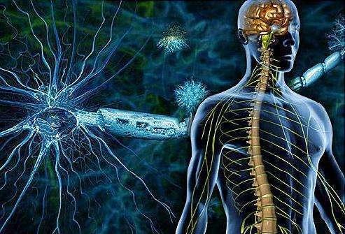 Рассеянный склероз суставы