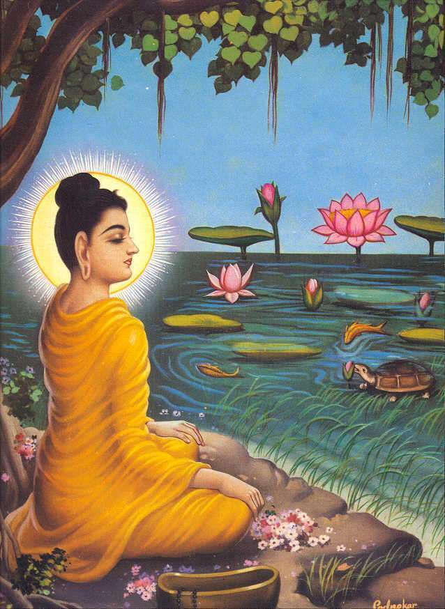 the role of teachers in siddhartha Throughout much of part two of siddhartha, the river plays an important role in the plot of the story in fact, it ultimately provides siddhartha with the lessons necessary in order to gain.
