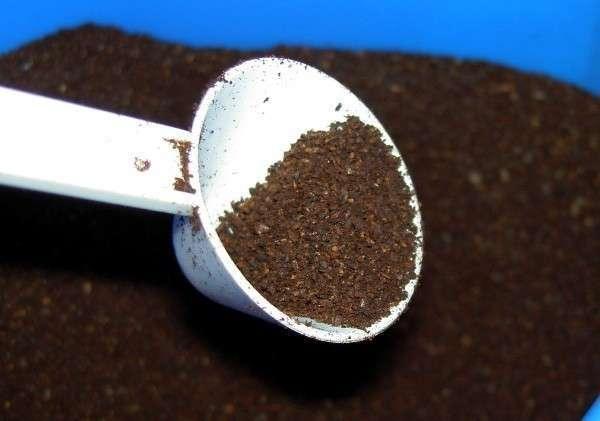 Подходящая для скраба кофейная гуща должна быть снята от крепко заваренного кофе