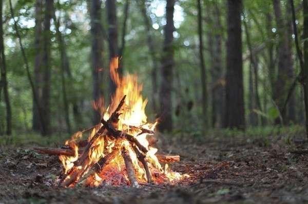 "Костер ""шалаш"" в лесу"