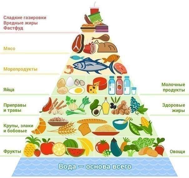 Как за 5 месяцев похудеть на 40 ru