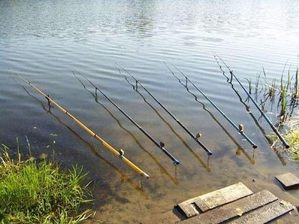 Длина удочки для ловли с берега