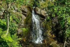 Парк водопадов «Менделиха»: необычное место в горном Сочи