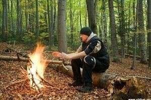 Как вести себя в лесу: основные правила поведения для детей и взрослых