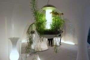 Лампа дневного света для растений: как правильно ухаживать за флорой