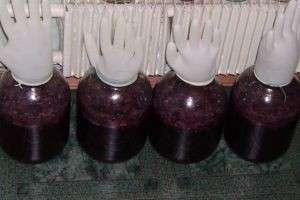 Как в домашних условиях из винограда сделать вино?