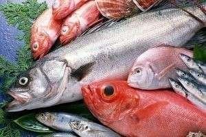 Польза и вред морской и речной рыбы. Вред копченой, вяленой рыбы
