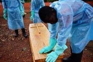 Откуда появился вирус Эбола и как началась эпидемия в 2014 году