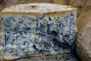 Сыр с голубой плесенью: деликатес для утонченных гурманов