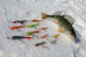 Как правильно ловить рыбу на спиннинг и на удочку?