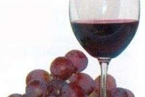 Что такое столовое вино?