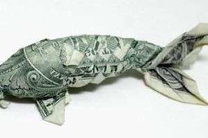 Что делать с курсом доллара: советы специалистов