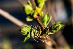 Девять лет - какая это свадьба: ромашковая или фаянсовая?