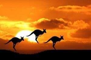 Символы Австралии: быстроногий кенгуру, Сиднейский дом оперы, тасманийский дьявол