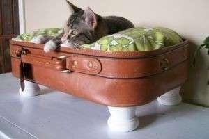 Где вашему питомцу будет тепло и уютно — лежанка для кошки своими руками