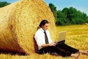 Прибыльные бизнес-идеи в сельском хозяйстве