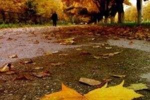Золотая осень: золотые правила борьбы с хандрой