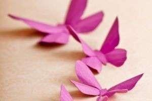 Как сделать бабочек из бумаги: из фантиков, ажурные, коллажи, объемные, в виде магнитов и подвесок