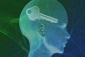 Роль кинезиологии в развитии интеллекта и логического мышления дошкольников