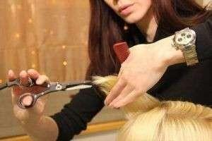 Плюсы и минусы стрижки горячими ножницами — быть или не быть?