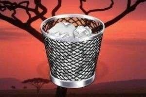 Как восстановить удаленные файлы из «Корзины» после очистки, или Как не уничтожить нужные документы