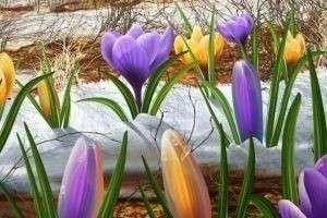 Почему март назвали мартом, апрель – апрелем, а май – маем