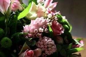 Какие цветы дарят на свадьбу — значение цветов, какие цветы можно дарить на свадьбу, а какие нет, а также сочетание различных видов цветов в букете