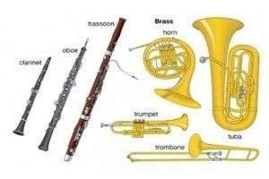 Виды и названия духовых музыкальных инструментов: клавишных, медных, деревянных