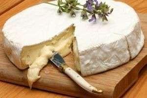 Виды мягких сыров: какими бывают деликатесные нежные сыры