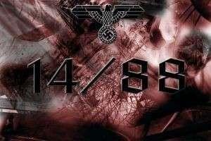 14 88 - что это? История выражения 14 88.