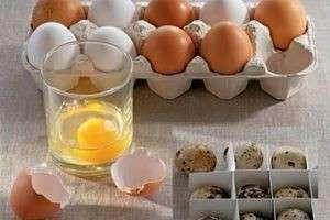 Сколько можно хранить свежие и вареные яйца в холодильнике?