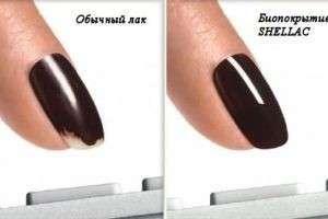 Что такое шеллак для ногтей и полезен ли он