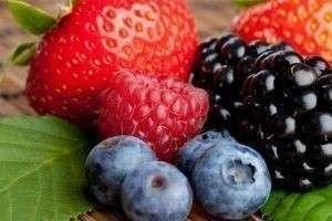 Удобрения для ягод: смородины, малины, голубики, земляники, крыжовника