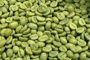Польза и вред зеленого кофе: пить или не пить новомодный напиток?