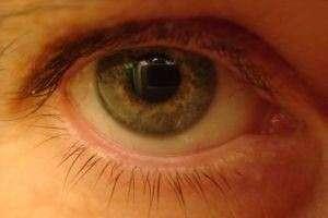 Глаз – уникальный объект биофизики. О возможностях наших глазок