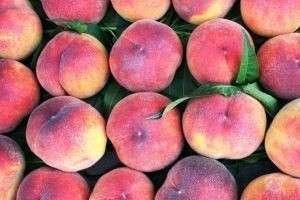 Персиковое масло для лица: «спасательный круг» для сухой, чувствительной и увядающей кожи
