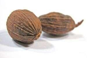 Полезные свойства мускатного ореха — ореха радости