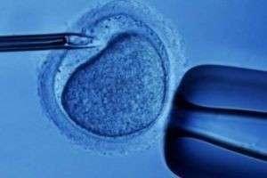 Экстракорпоральное оплодотворение: реальный шанс стать родителями