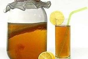 Полезный и вкусный напиток — как вырастить чайный гриб с нуля