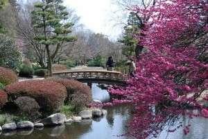 Природные достопримечательности Японии