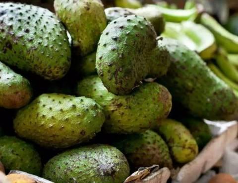 Гуанабана или фрукт, который лечит рак: свойства и особенности