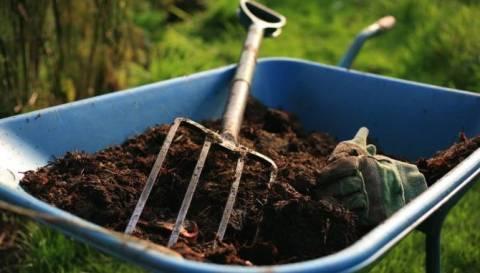 Дачникам на заметку: чем удобрять почву весной?