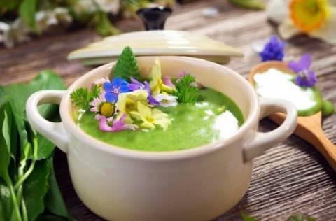 Срочно на стол: холодные супы из щавеля