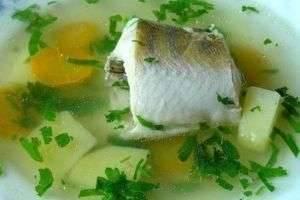 Уха из судака: рецепты приготовления вкусного и полезного первого блюда