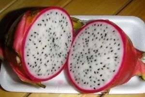 Экзотические фрукты: названия, которые звучат, как музыка, и потрясающий вкус